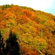 奥飛騨の紅葉