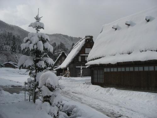 Fujii2010012544